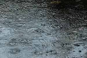 雨漏りの対策・点検は、梅雨の時期をおすすめします。