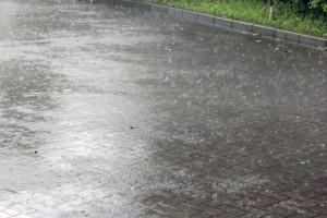 台風などの大雨のあとは、雨漏りの点検をおすすめします。